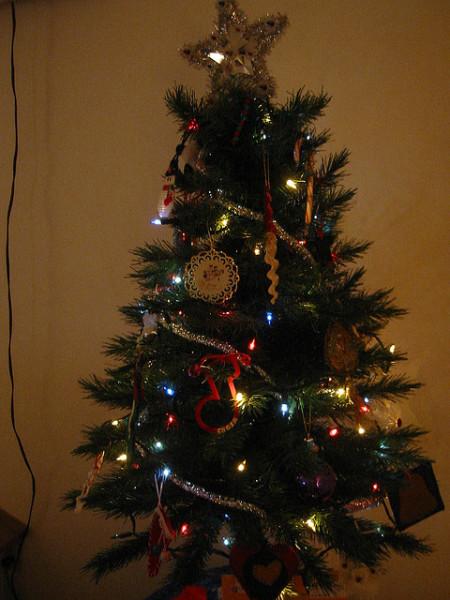 small-tree-450x600